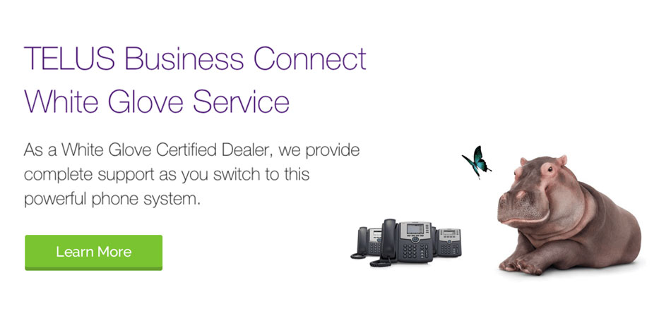 TELUS Mobility & Telecommunication Solutions